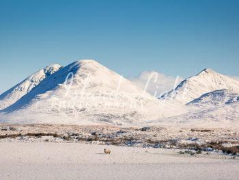 Paps of Jura Snow Winter