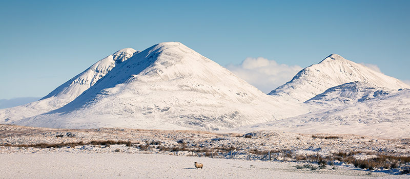 Winter on Islay