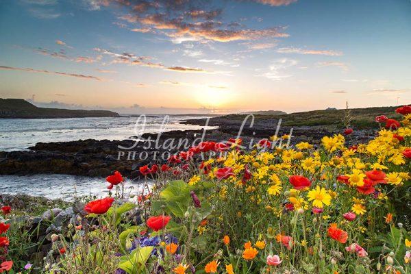 Flowers Coastal Path