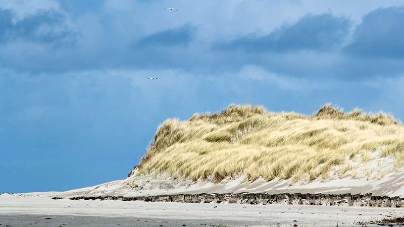 Killinallan Point Dunes from a Distance